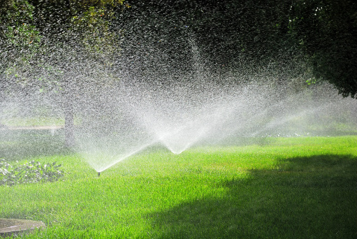 Springtime is the perfect time for an Irrigation Checkup